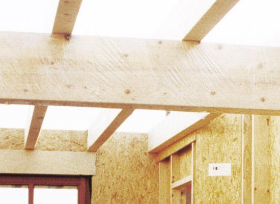 Holz, Holzwerkstoffe und Holzkonstruktionen