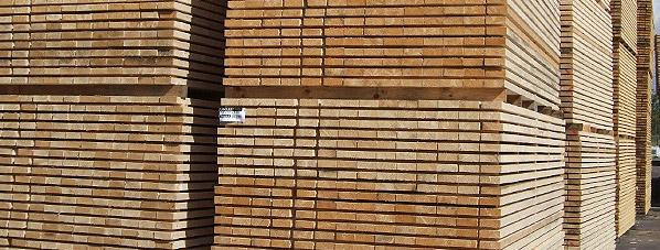 Holz_Holzwerkstoffe_Holzkonstruktionen-6